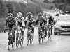 Coronation Cup - Third - Breakaway by Tim Booth