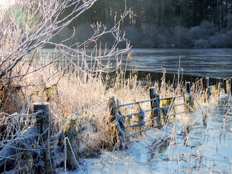 Newcomers Prints - Third - Derwent Water In Winter by Trudy Higgins (December 2014)