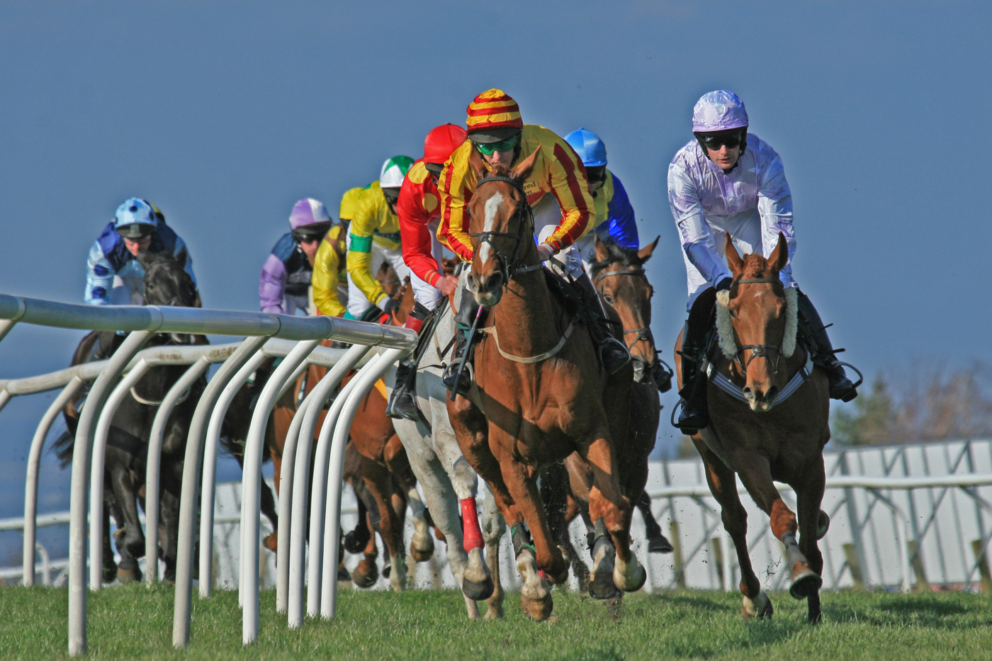 Advanced Colour Prints - HC - At The Races by Brian Hinvest (February 2016)