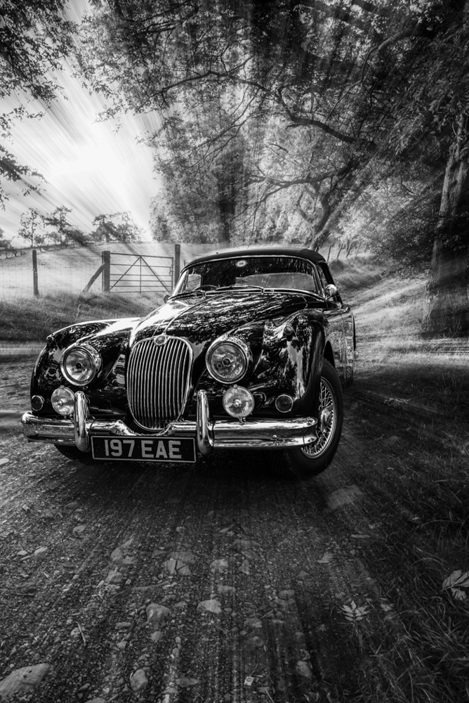 Advanced Monochrome Prints - First - Jaguar by Steve McLellan (February 2017)