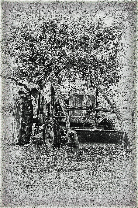 Advanced Monochrome Prints - HC - Sad Old Timer by Steve McLellan