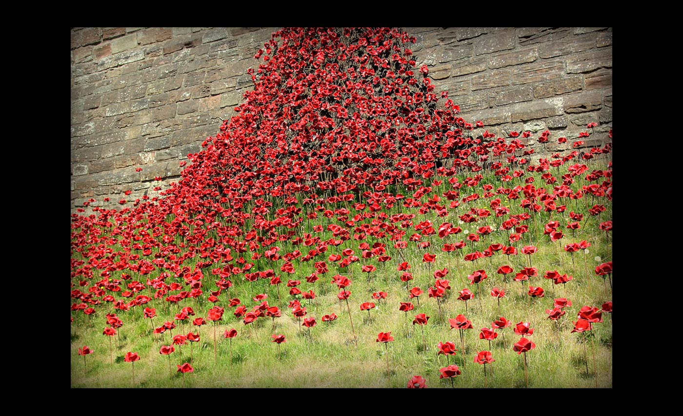 Club Colour Prints - C - Weeping Window Splash by Sean Butterworth
