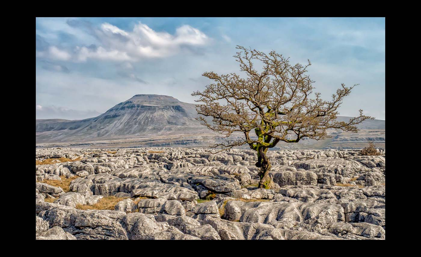 Advanced Colour Prints - Third - Limestone Pavement by Jeff Saunders