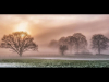 Mattinson-Cup-HC-Brian-Hinvest-Foggy-Sunset