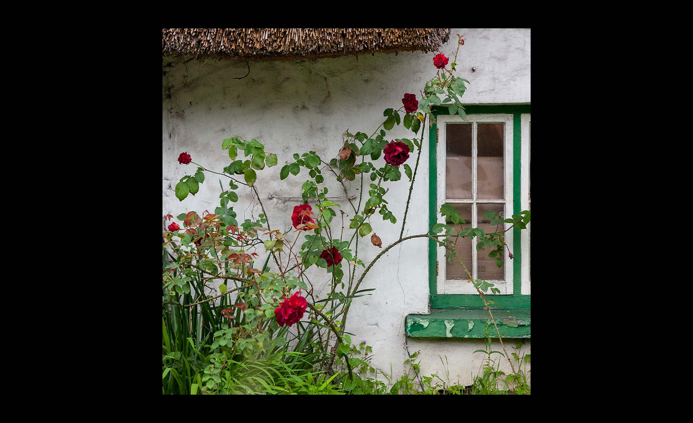 Advanced Colour Print - Second -  Cottage Window by Pax Garabedian