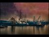 Advanced-Colour-3rd-Industrial-Pollution-Goa-2018-Norman-Butler