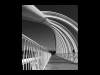 Advanced-Mono-1st-New-Plymouth-Whalebone-Bridge-Michael-Bottomley