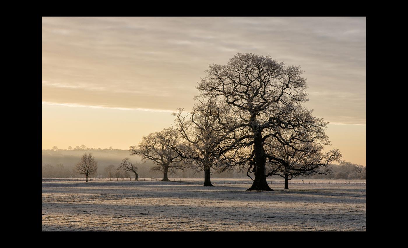 Club-Colour-1st-Winter-Sunrise-At-Kirkoswald-Simon-Wood