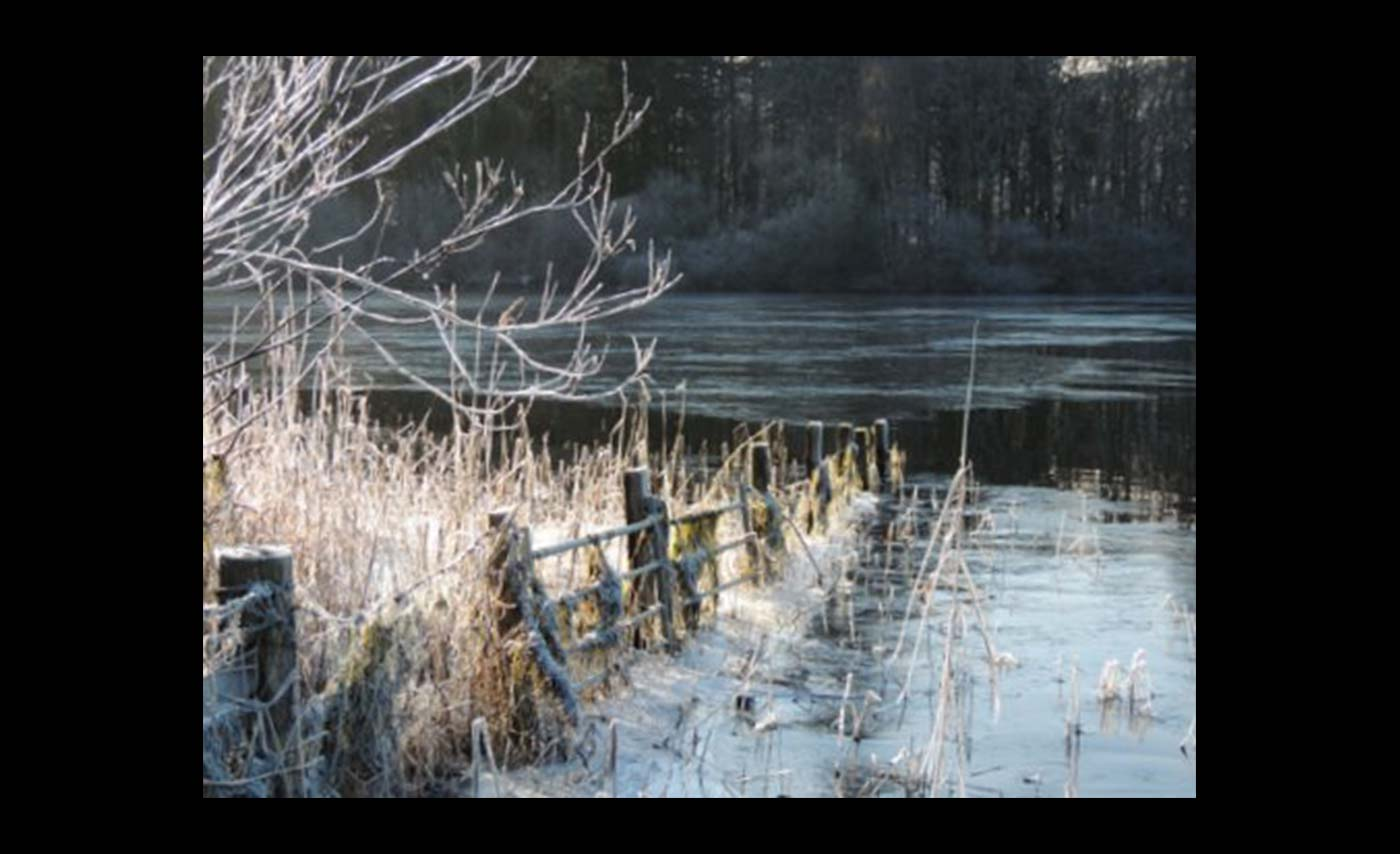 Club Colour Prints - HC - Moonshine On Frozen Lake by Trudi Higgins