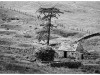 Old Hands Mono Prints - HC - Abandoned Farmhouse #3 by Pax Garabedian.jpg