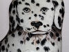Newcomers Prints - First - How Much Is That Doggy In The Window by Barry Frizell
