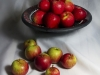 Newcomers Prints - First - How Do You Like Them Apples by Steve Mclellan