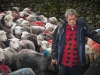 Advanced Projected Images - Second - Counting Sheep by Alan Thomson