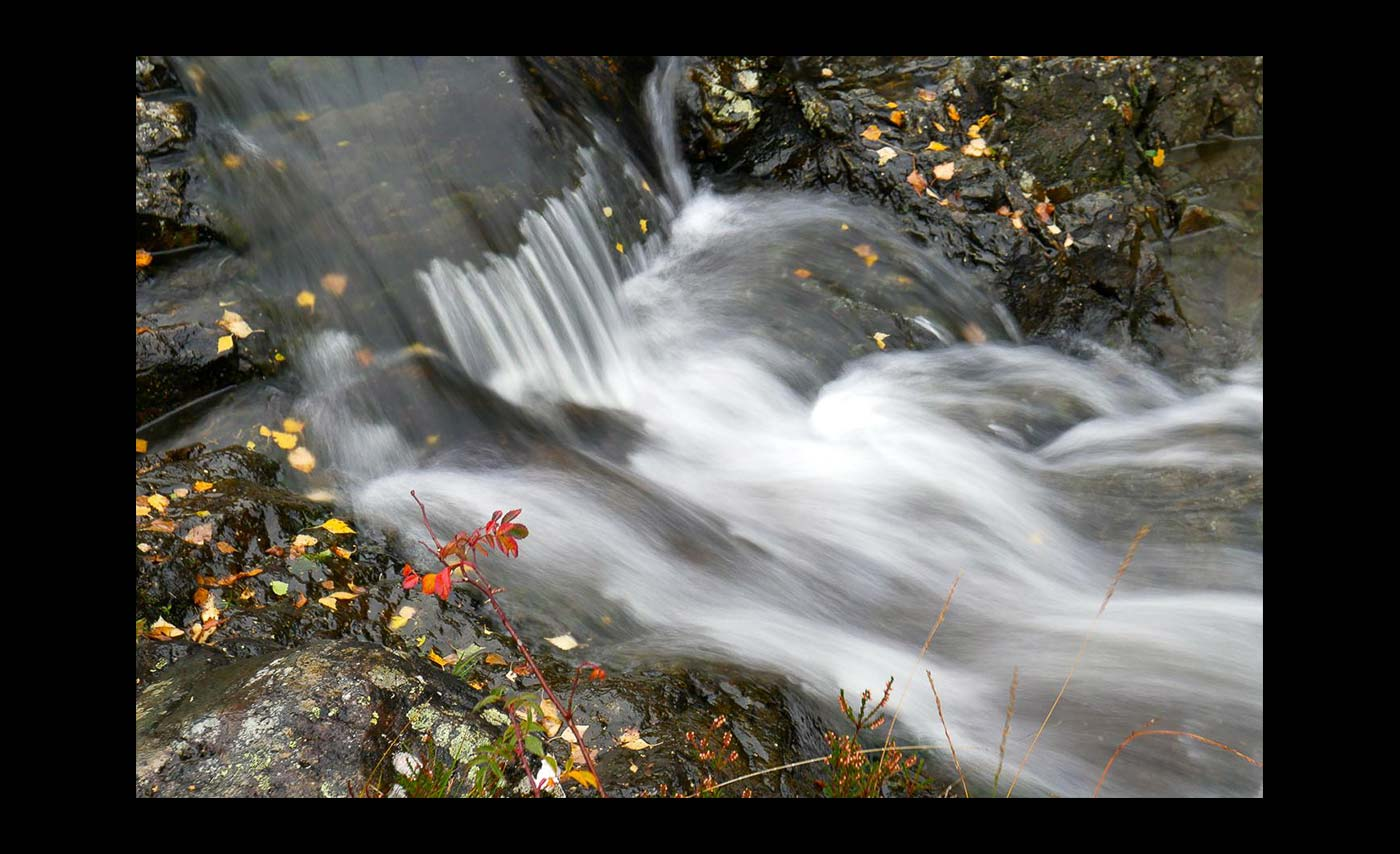 Club Colour Prints - Second - Ashness Stream In Autumn by Barbara Rowland