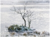 Old Hands Colour Prints - First - Winter at Rydal by Dennis Balmer