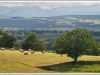 Newcomers Projected Images - HC - Eden Valley by Ken Scott