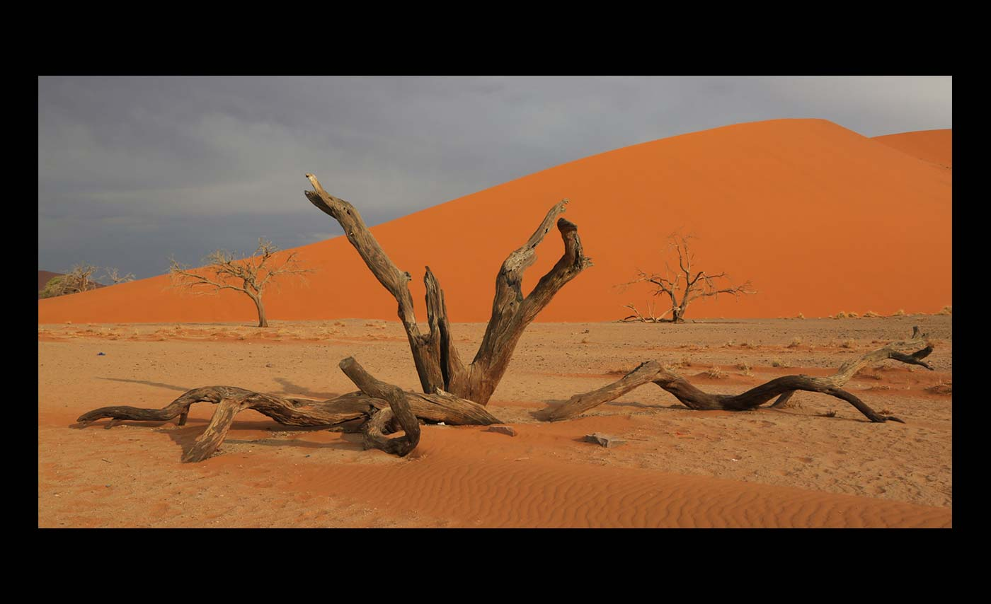 Advanced Projected Images - C - DeadVlei by Ashley French