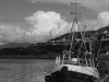 Newcomers Prints - HC - Mallaig Harbour by Lyndsay Goodfellow