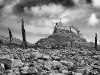 Advanced Monochrome Prints - HC - Lindisfarne by Tim Booth (November 2012)